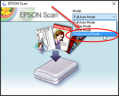 epson-professional-mode